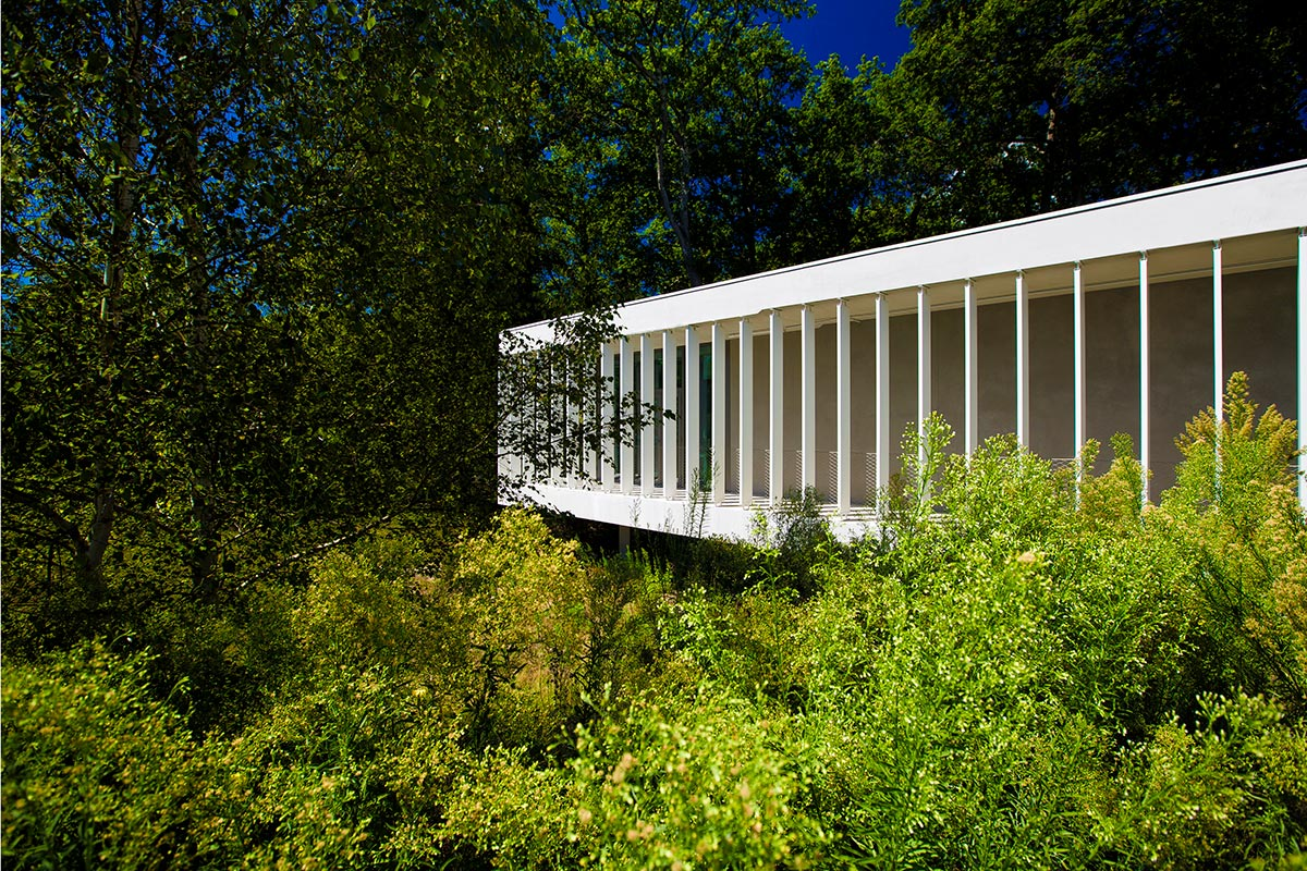 View Of The SIBA In Biganos Realized By The Agency Bulle Architectes And Immersed In The Surrounding Vegetation.